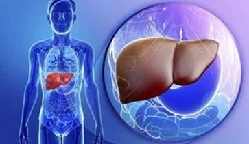 2021春季如何养肝护肝排毒 春季养肝方法大全