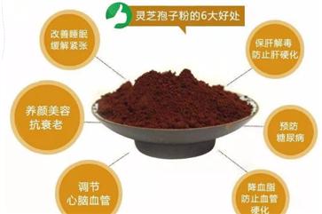 灵芝孢子粉怎么吃 灵芝孢子粉的吃法和用量