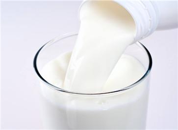 纯牛奶的功效与作用 牛奶的食用方法