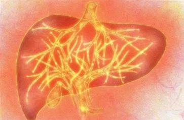 肝火旺怎么调理 长期肝火旺吃什么药好