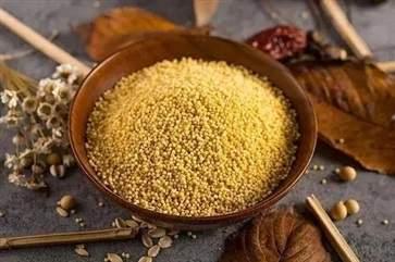 小米的营养功效有哪些 小米和这些食物搭配效果好