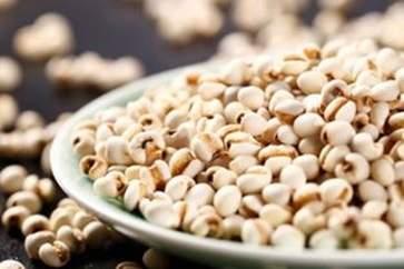薏米的功效与作用 薏米的营养价值